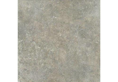 Vloertegel: Dado Ourthe Grijs 60x60cm