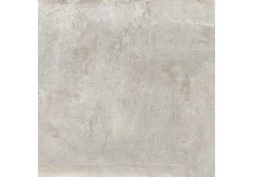 Vloertegel: Dado Merwede Grijs 60x60cm
