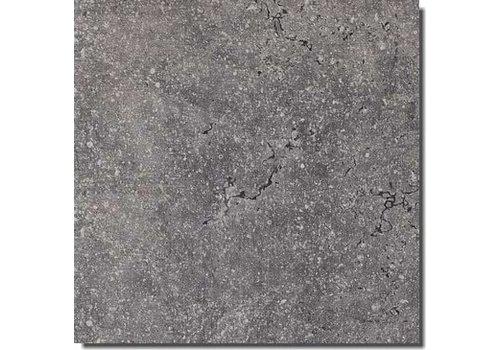 Rex Pietra del Nord 735309 60x60 vt anticato naturale grigio