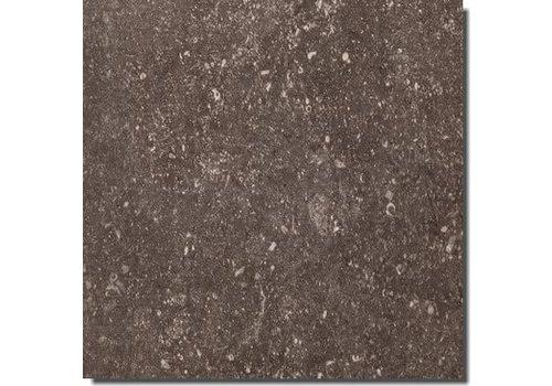 Rex Pietra del Nord 735310 60x60 vt anticato naturale fango