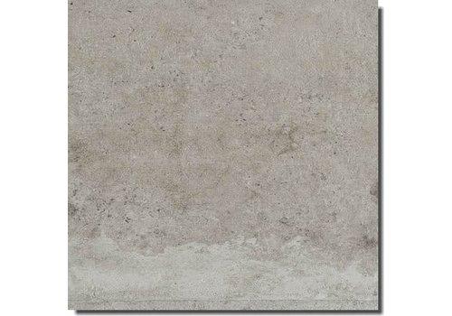 Rex La Roche 742213 60x60 vt grey anticato naturale e rett