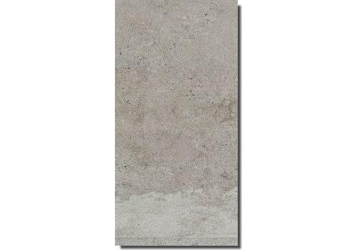 Rex La Roche 742040 40x80 vt grey anticato naturale e rett
