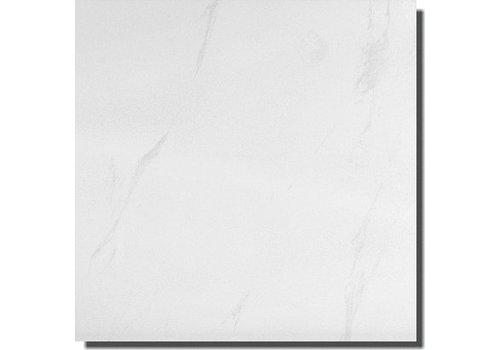 Vloertegel: Steuler Marble Wit 73x73cm