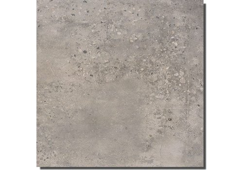 Fioranese Concrete 45,3x90,6 vt light grey N/R
