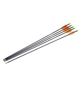 "Armex Fiberglass arrow 30"" - 5 pc"