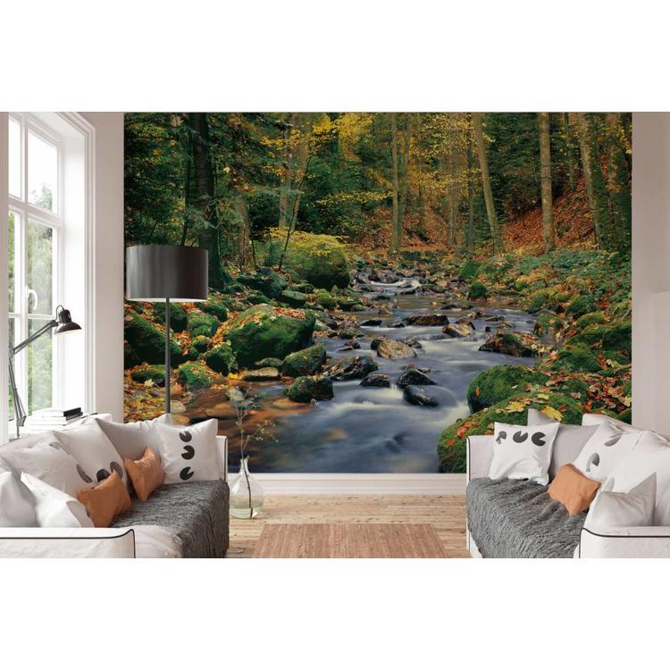 Beek in het bos  - Fotobehang 366 x 254 cm