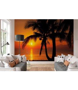 Fotobehang Zonsondergang palmboom