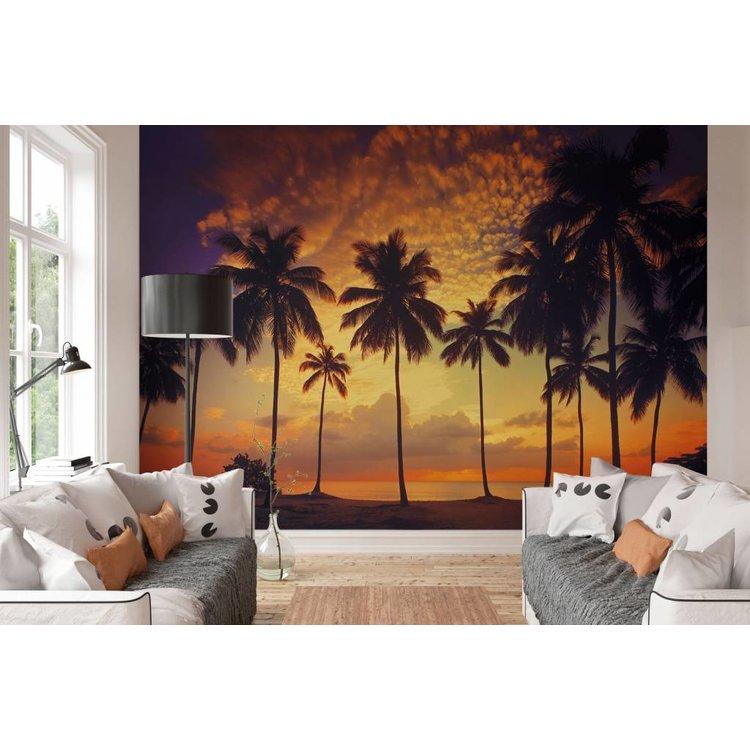 Zonsondergang Palmbomen - Fotobehang 388 x 270 cm