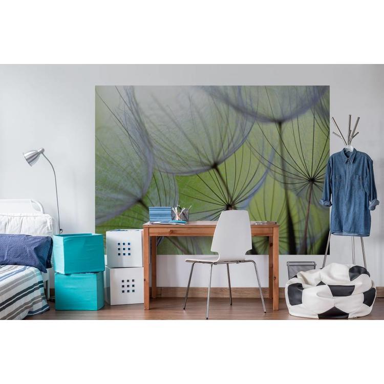 Paardenbloem  - Fotobehang 254 x 184 cm