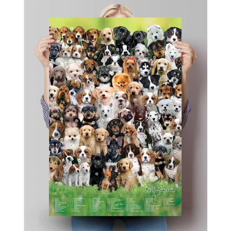 Honden  - Poster 61 x 91.5 cm