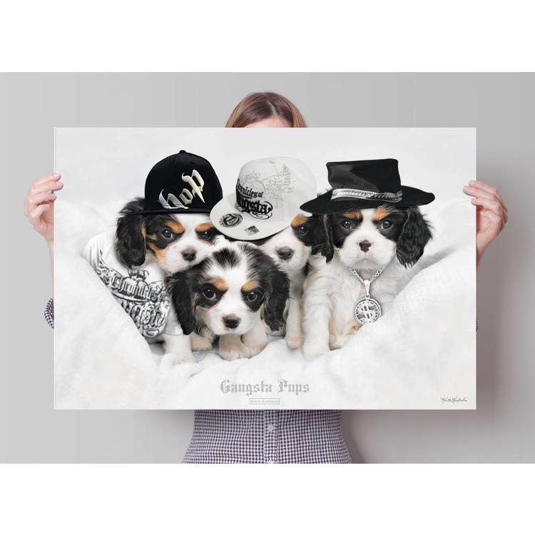 Keith Kimberlin Gangsta pups  - Poster 91.5 x 61 cm