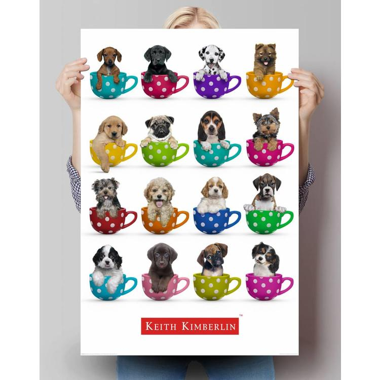 keith Kimberlin pups in kopjes  - Poster 61 x 91.5 cm