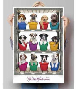 Poster Keith Kimberlin pups voor de verkoop