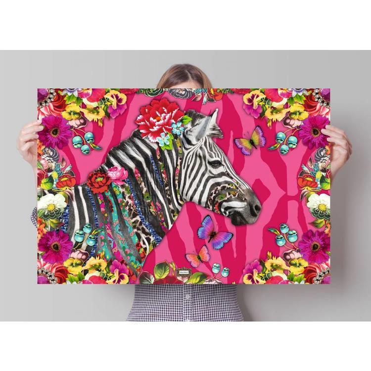 Melli Mello zebra  - Poster 91.5 x 61 cm