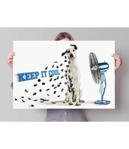 Poster Keep it Cool