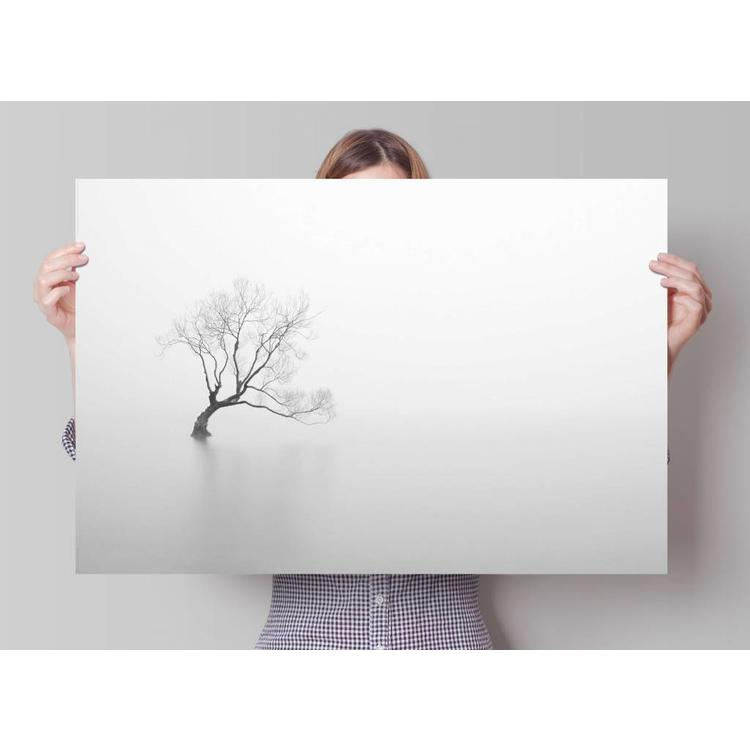 Silent Tree  - Poster 91.5 x 61 cm