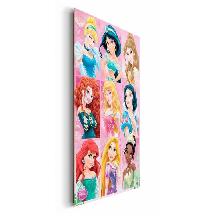 Disney Princess compilatie  - Schilderij 60 x 90 cm