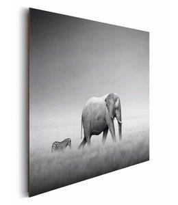 Schilderij Olifant & zebra