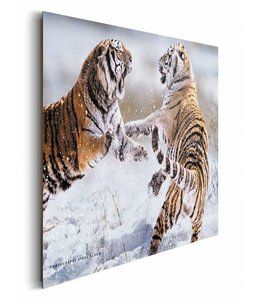 Schilderij Siberische tijger