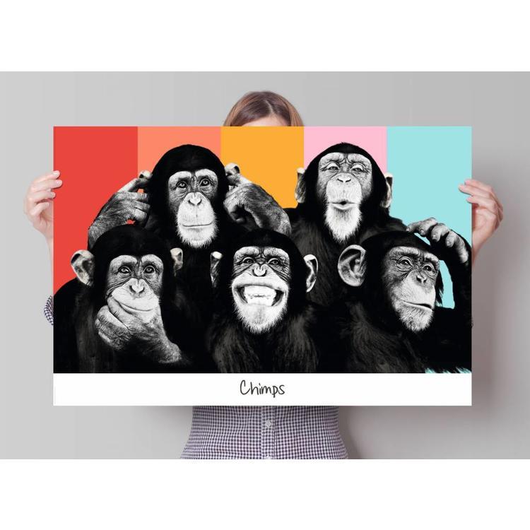 Apen popart  - Poster 91.5 x 61 cm