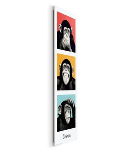 Schilderij The Chimp pop