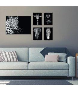 Canvas Set Wilde dieren
