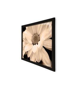 Schilderij Bloemen Sepia