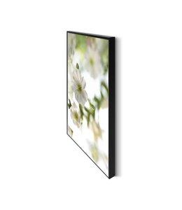 Schilderij Witte Bloesem I