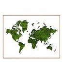 Schilderij Wereldkaart van Mos