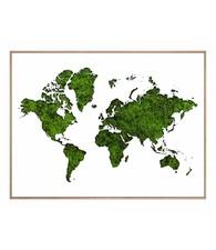 Wereldkaart van Mos  - Schilderij 40 x 30 cm