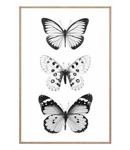 Schilderij 3 Vlinders
