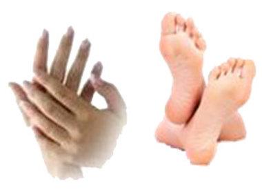 Hand- & Voetverzorging