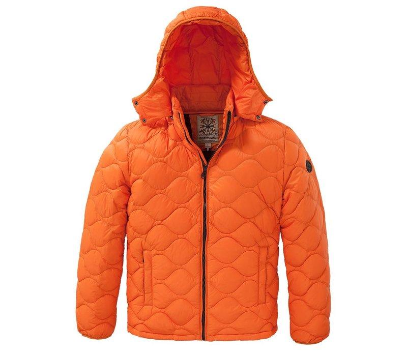 Down jacket Dense