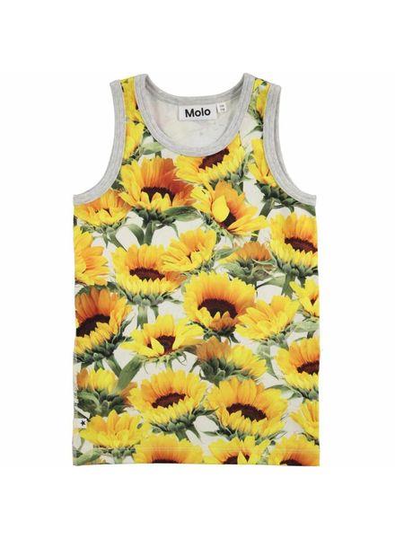 Molo Hedje sunflower fields