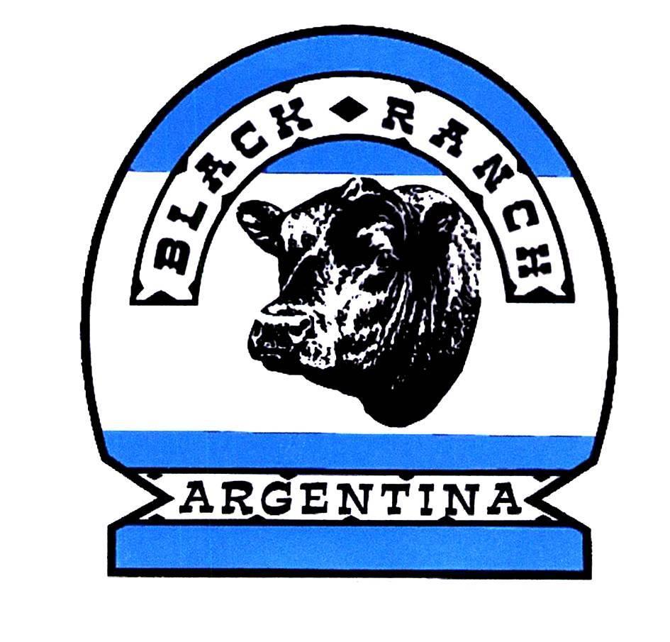 Black Ranch, RODE Quebracho (Argentinie) Briketten 18 kilo