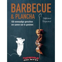 Fontaine Barbecue & Plancha