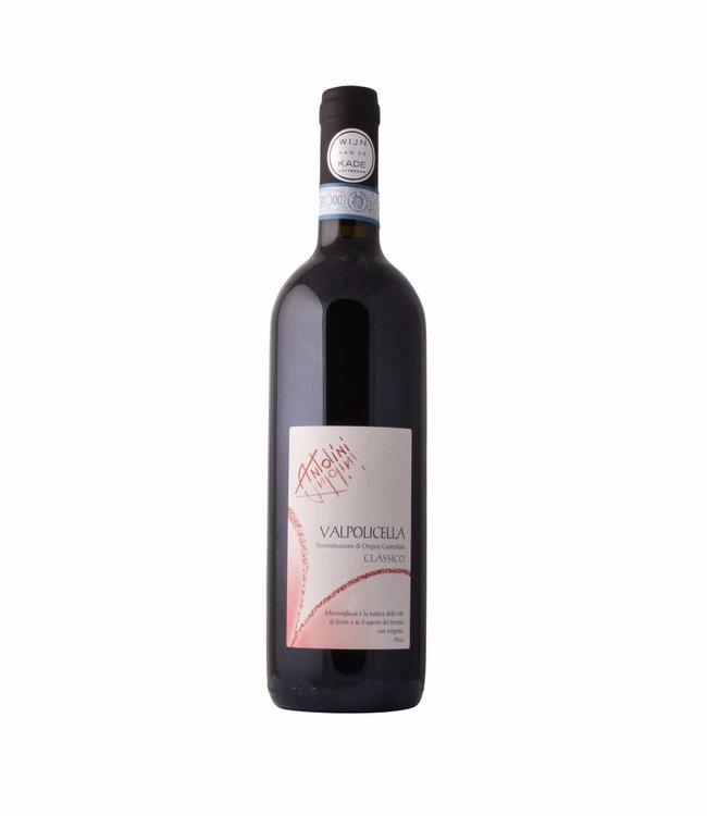 Antolini Valpolicella Classico 2014