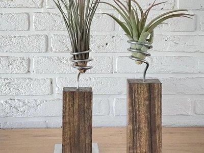 Holz & Flora
