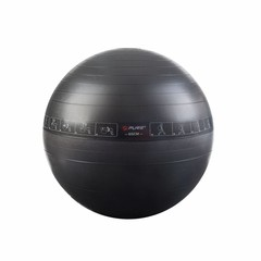 Pure2Improve Pure2Improve Exercise Ball