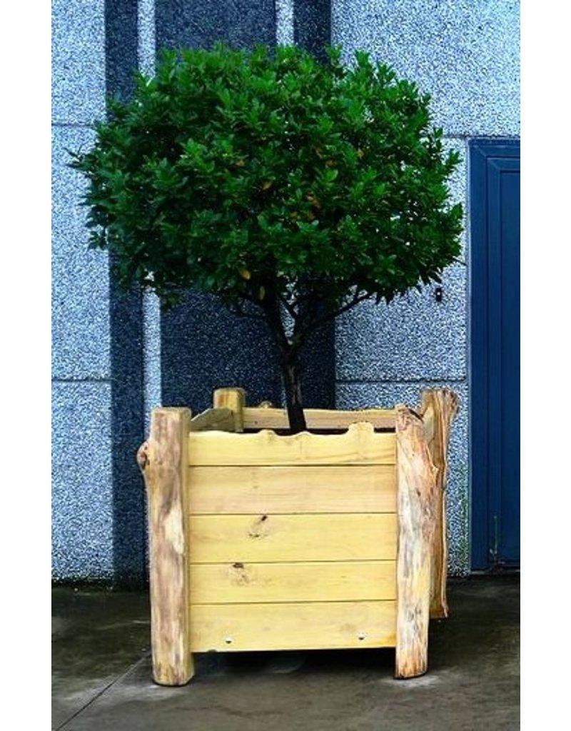 Deboscat Plantenbakken Natuurlijk 90x90