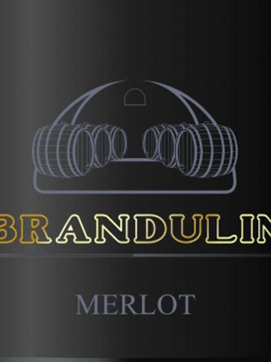 Brandulin | Gorška Brdā | Slovenia Brandulin | Merlot 2008
