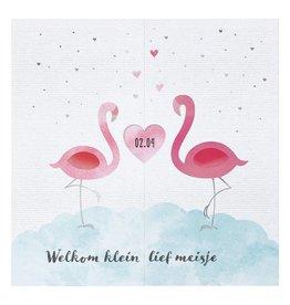 Belarto Welcome Wonder 2017 Geboortekaart met sierlijke flamingo's en hartje