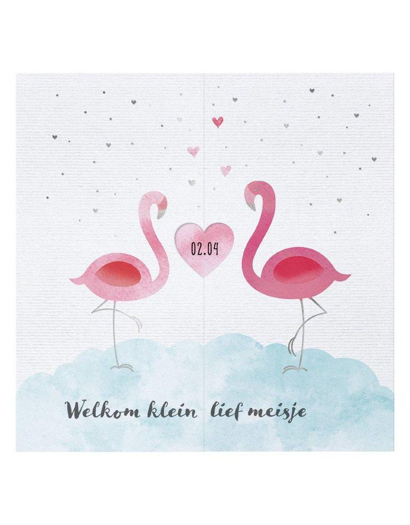 Belarto Welcome Wonder 2017 Geboortekaart met sierlijke flamingo's en hartje (717049)