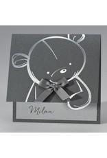 Buromac Pirouette Geboortekaart schattige teddybeer op staal (507055)