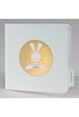 Buromac Pirouette Geboortekaart met retro konijn mint met goudfolie (507069)