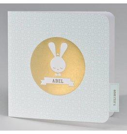 Buromac Pirouette Geboortekaart met retro konijn mint met goudfolie