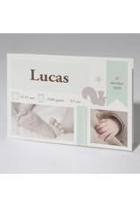 Familycards Klein Wonder Geboortekaartje Lucas (63695)