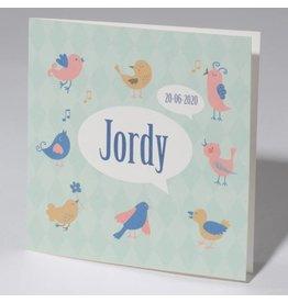 Familycards Klein Wonder Geboortekaartje 'Birds'