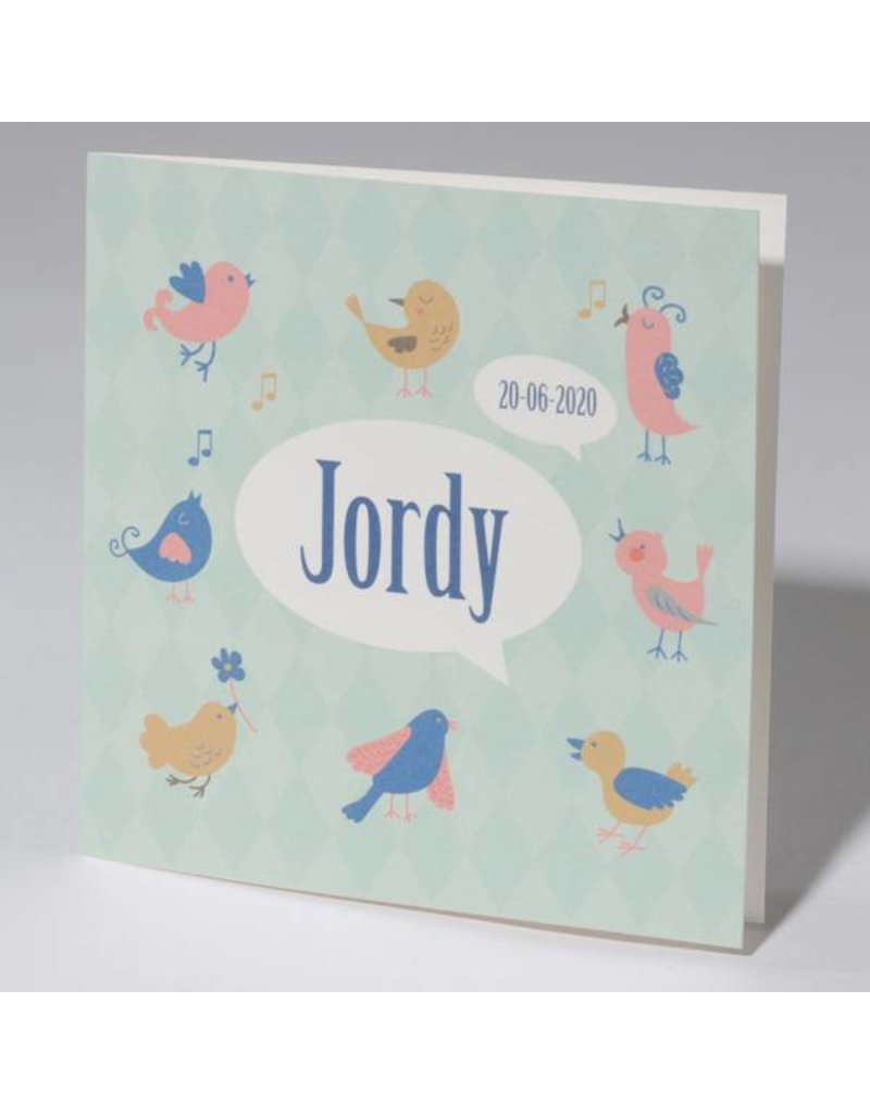 Familycards Klein Wonder Geboortekaartje 'Birds' (63740)