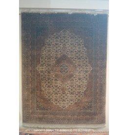 Art. V - 253 -Indo-Bidjar